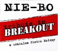 NIE-BO - tribute to Breakout